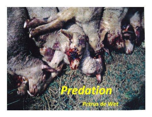 Predation - IWTO