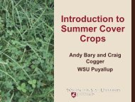 Introduction to Summer Cover Crops