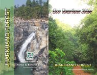ECO Tourism Sites - Jharkhand Forest