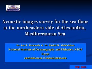 Acoustic images survey for the sea floor at the northeastern ... - LTHE
