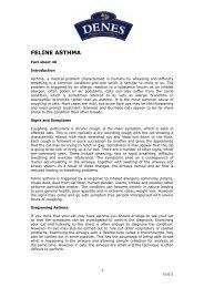 FELINE ASTHMA - Denes Natural Pet Care