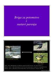 12 Briga za potomstvo i sustavi parenja.pdf