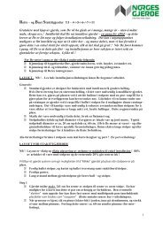 Rette – og Buet Stakittgjerder TJ – 4