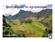Biodiversidad en agropaisajes