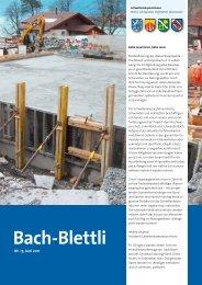 Nr. 17, Juni 2011 - schwellenkorporationen.ch