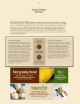 2006 Annual Report - Monsanto - Page 6