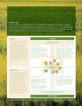 Monsanto 2007 Annual Report & 10-K - Page 7