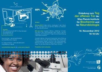 Flyer zum Tag der offenen Tür - Max-Planck-Institut für Neurobiologie