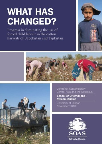 What Has Changed? Progress in eliminating the ... - Cotton Campaign