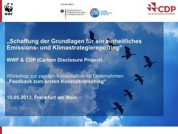 WWF & CDP (Carbon Disclosure Project) - Klimareporting.de
