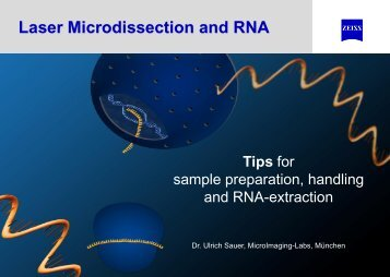 RNA-Extraction
