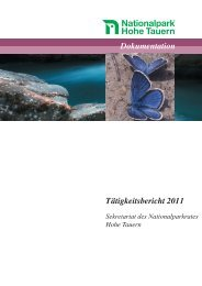 Tätigkeitsbericht 2011.pdf