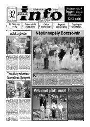 Népünnepély Borzsován - Kárpátinfo.net