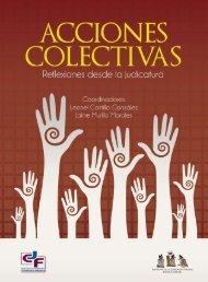 Acciones colectivas IJF 2014