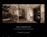 The Labyrinth - Joe Lipka Photography