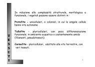 Archeomagnetica (paleomagnetica) datazione