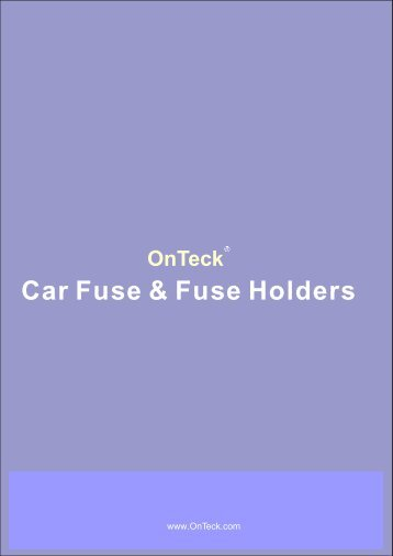 Car fuse and fuse holders 2008+ - OnTeck