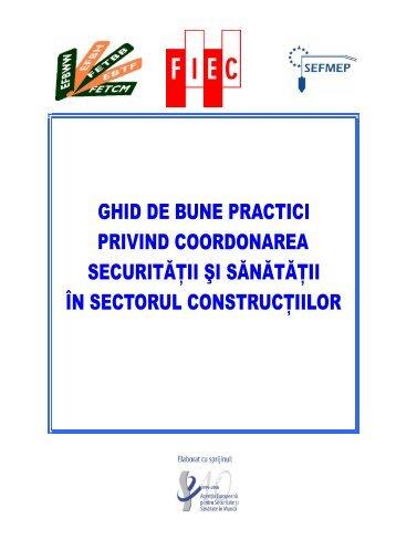 Ghid de bune practici privind coordonarea securitatii si sanatatii in ...