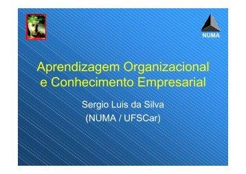 Aprendizagem Organizacional e Conhecimento Empresarial