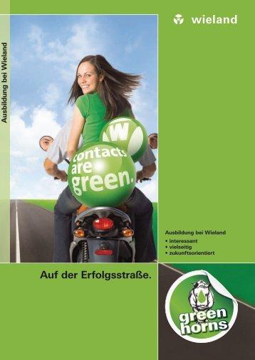 Ausbildung Broschüre (0912.0) - Wieland Electric