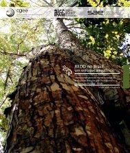 REDD no Brasil: um enfoque amazônico - Observatório do REDD