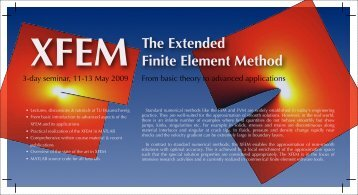 The Extended Finite Element Method - XFEM - RWTH Aachen ...