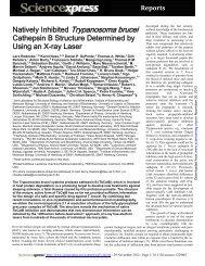 Science Manuscript Template - im Institut für Biochemie