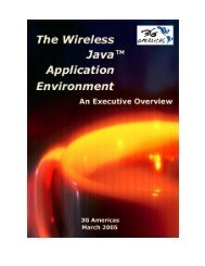 The Wireless Java™ Application Environment - 4G Americas