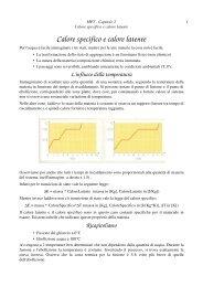Calore specifico e calore latente - Ticino.com