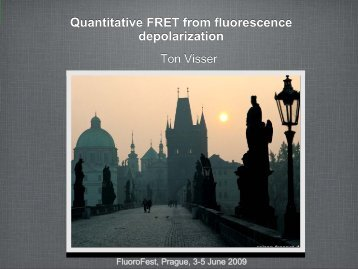 Quantitative FRET from fluorescence depolarization - University of ...