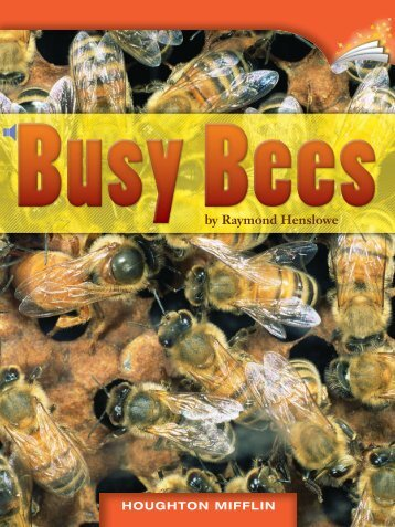 Lesson 6:Busy Bees