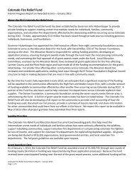 Colorado Fire Relief Fund - The Denver Foundation