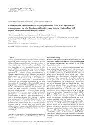 Occurrence of Pseudomonas avellanae - Atlas Plant Pathogenic ...