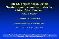 The EU-project SMAS