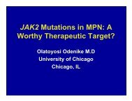 JAK2 Mutations in MPN: A Worthy Therapeutic Target?