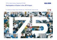 Participation of Sulzer in the JET-Project - Iter Industry