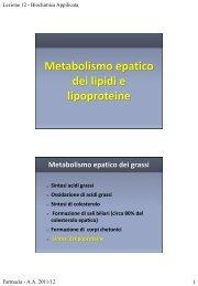 Metabolismo epatico dei lipidi e lipoproteine
