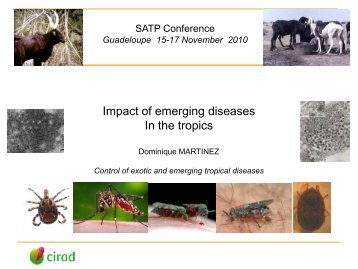 Emerging diseases and animal production, by Dr D. Martinez - Inra
