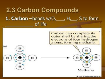 2.3 Carbon Compounds Clozed Notes.pdf