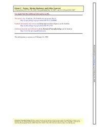 G.Turner, M.Bazhenov and G.Laurent. Olfactory representations by ...