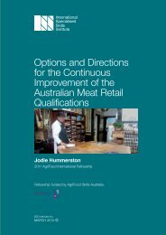 Options and Directions for the Continuous Improvement of the ...