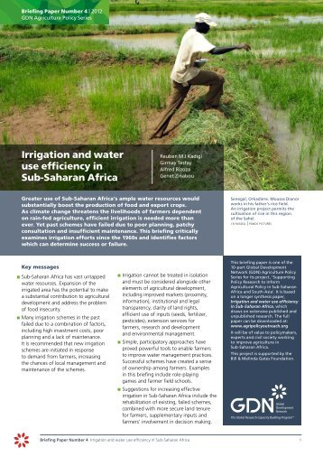 Irrigation and water use efficiency in Sub-Saharan Africa - Global ...
