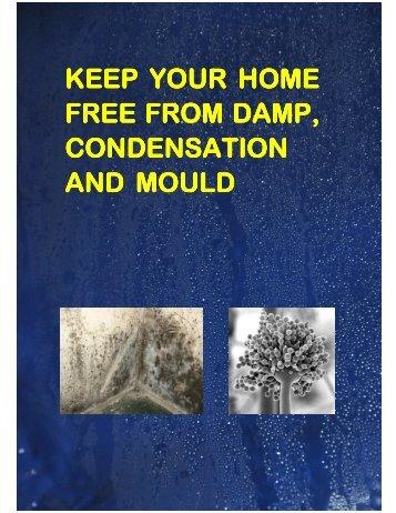 Damp-Info-Leaflet