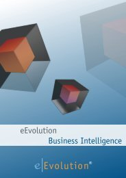 eEvolution Business Intelligence Broschüre downloaden