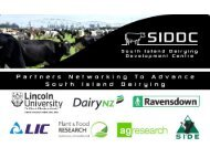 Future directions for the Lincoln University Dairy Farm ... - DairyTas