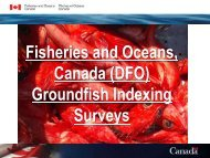 Groundfish Multi-species Bottom Trawl Surveys