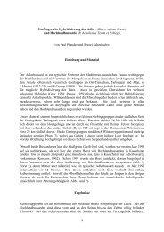 Umfangreiche Hybridisierung der Adler- (Buteo rufinus Cretz
