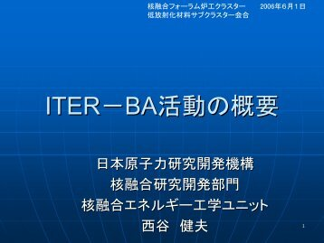 ITER-BA活動の概要 - 那珂核融合研究所 - 日本原子力研究開発機構