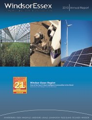 2010 Annual Report - Windsor Essex Economic Development ...