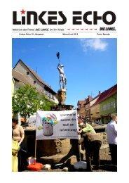 Linkes ECHO Juni 2013 - Die-linke-ilmkreis.de